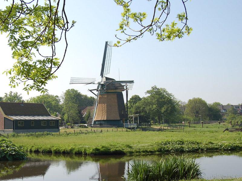 i4 Housing makelaar in omgeving Wassenaar